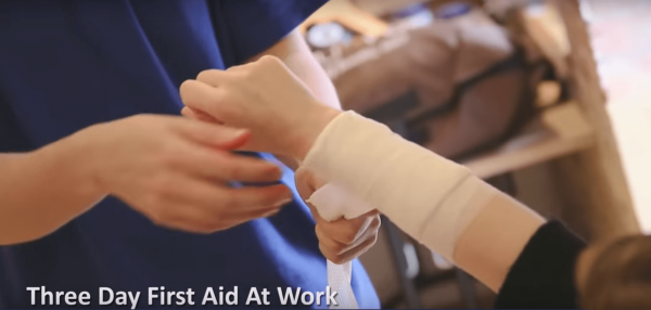 3 day first aid training